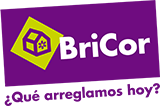 logo bricor